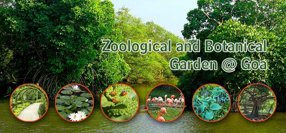 zoological botanical garden